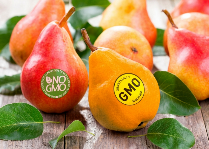 30 Questions for You on the GMO Labeling Standard