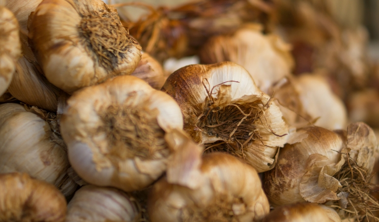 Organic Garlic: Perpetual Demand Exceeds Situation