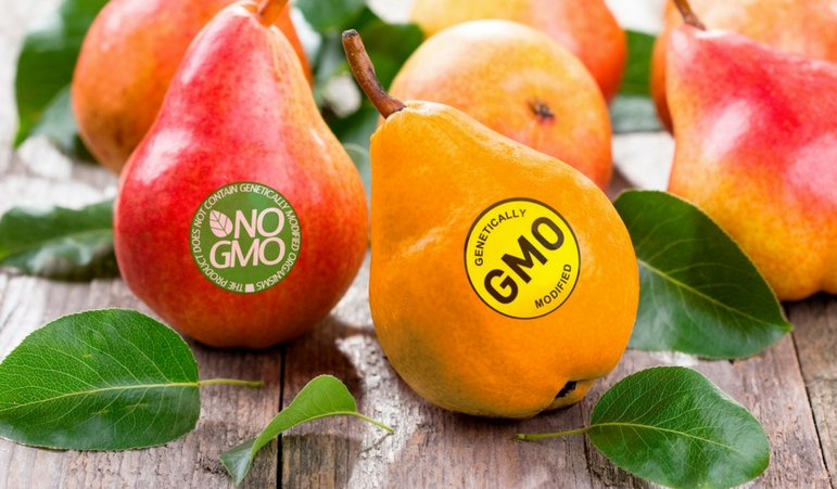 Will FDA Alter the GMO Argument for Organic?