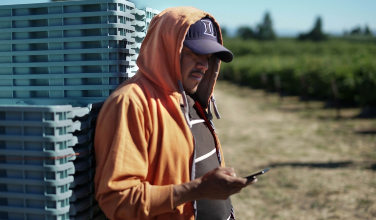 Ganaz, a New App Aims to Solve Agricultural Labor Woes