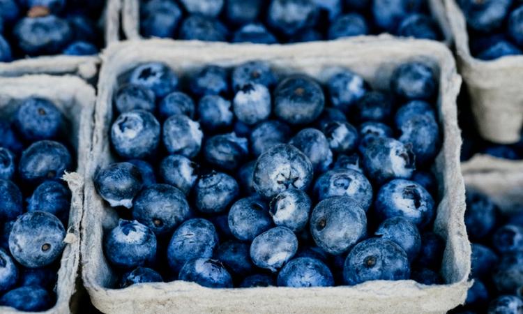 Weekly Top5: Organic News To Help You Grow