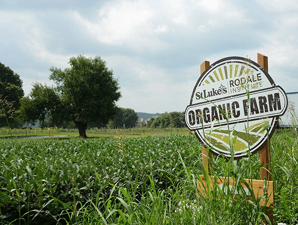 Rodale Institute's Jeff Moyer Digs Deep on Regenerative Organic Agriculture