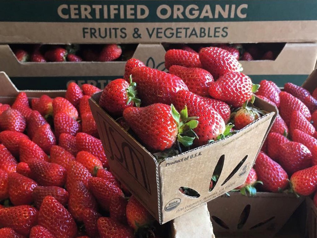 Sambrailo's ReadyCycle™ Packaging: A Success for Organic Growers