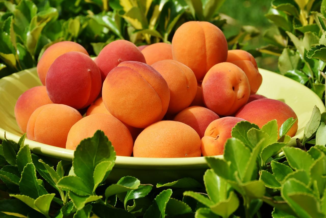 "Homegrown Organic ""Defining & Refining"" Its Stone Fruit Supplies"