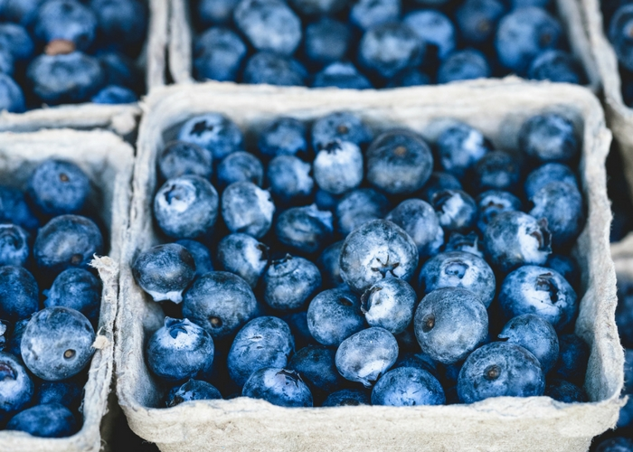California Organic Blueberry Season Kicks Off