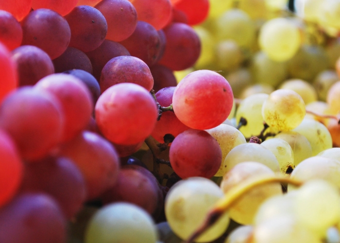 Organic Grapes Hitting the Market Soon
