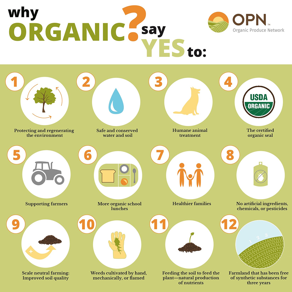 Why Organic Infographic