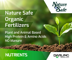 NatureSafe April 2021